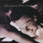 Steve Winwood- Back in the High Life 30th Anniversary